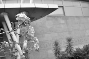 Baker-Nord Center sponsors picturesque poetry readings