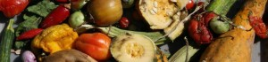 Composting: the inside story