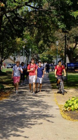 Richards: The bicycle dilemma on campus