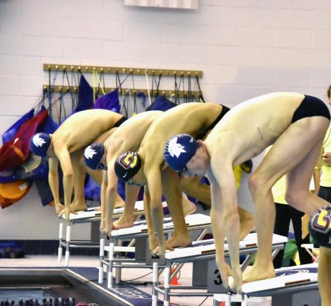 Spartans make waves at NCAAs