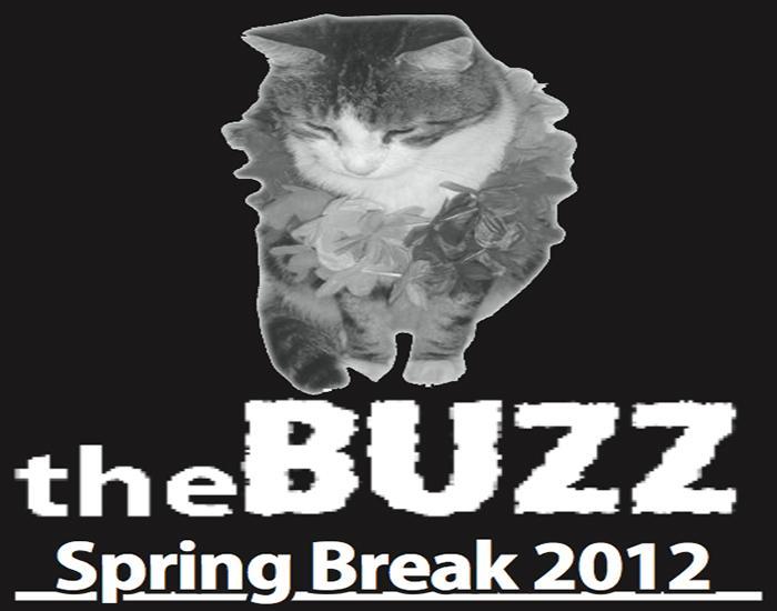 The+Buzz