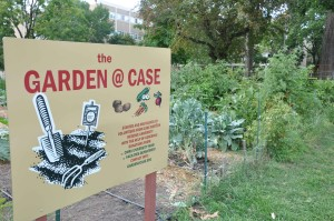 Campus garden continues to harvest goodwill, welcome volunteers