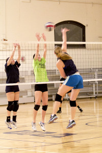Volleyball Club finds time for fun