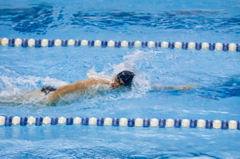 Swim and dive kicks past competition