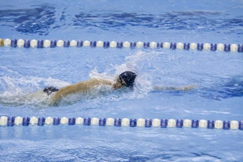 Four members of the swimming team competed at the NCAA Championships with Drew Hamilton earning two All-America Honorable Mentions.