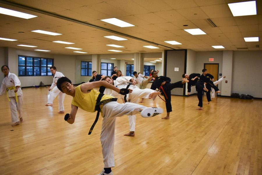 Members of the Taekwondo Club practicing a kick as part of their training.