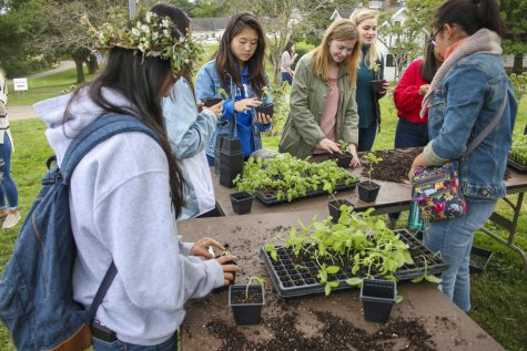 Farm Harvest Festival welcomes new season