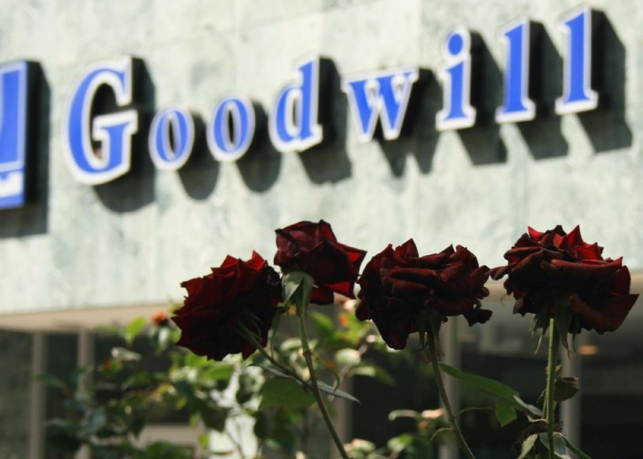Goodwill is one of the many options students have for buying clothes in the area.