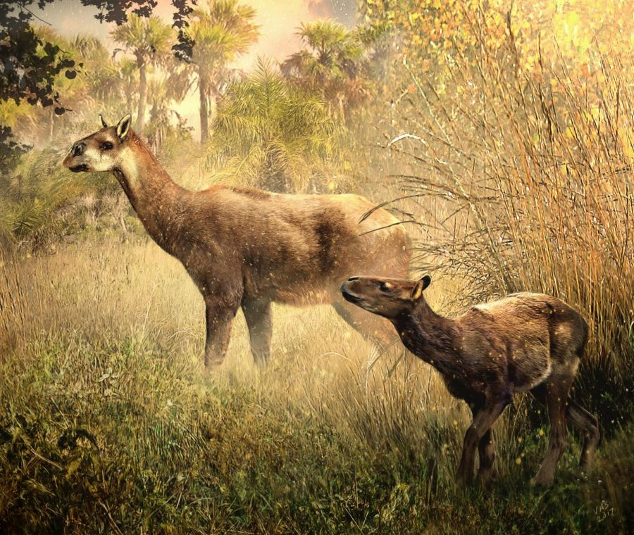A rendering of the discovered Theosodon arozquetai and Llullataruca shockeyi by paleoartist Velizar Simeonovski