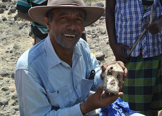 CWRU+researchers+find+3.8+million-year-old+skull